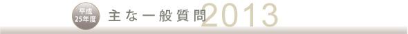 平成25年度 主な一般質問(2013)